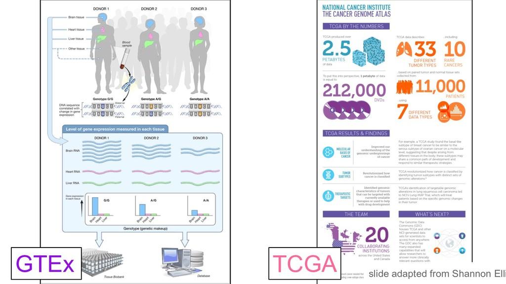 GTEx TCGA slide adapted from Shannon Elli