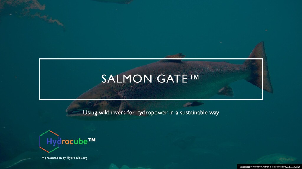 SALMON GATE™ Using wild rivers for hydropower i...