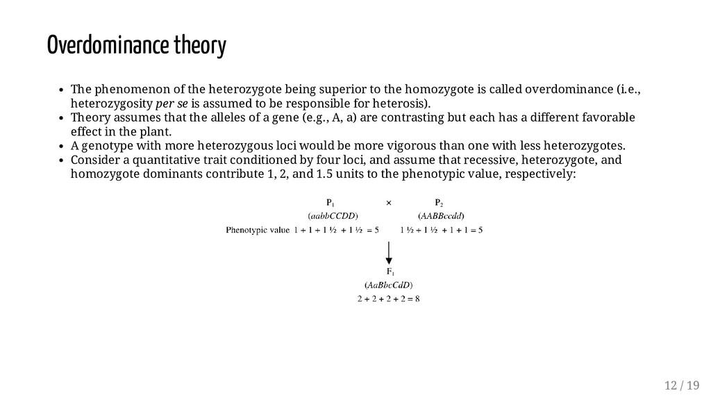 Overdominance theory The phenomenon of the hete...