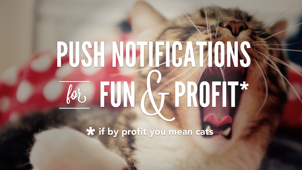 PUSH NOTIFICATIONS FUN PROFIT* for & *if by pro...