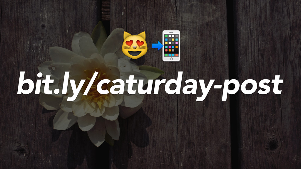 bit.ly/caturday-post