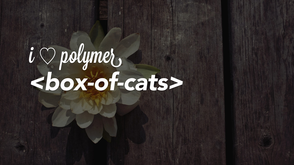 i ὑ polymer <box-of-cats>