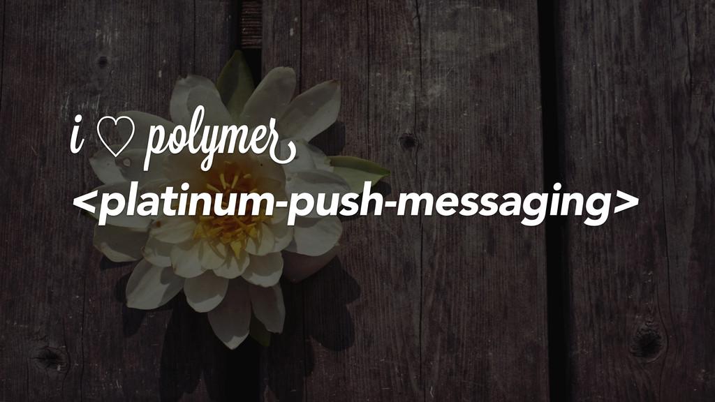 <platinum-push-messaging> i ὑ polymer