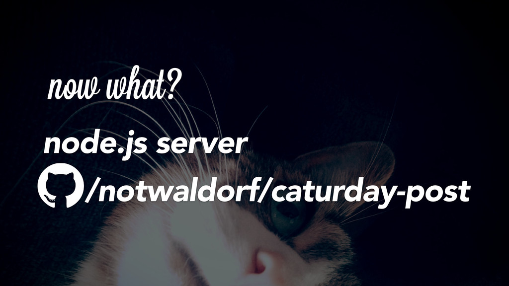 now what? node.js server /notwaldorf/caturday-p...