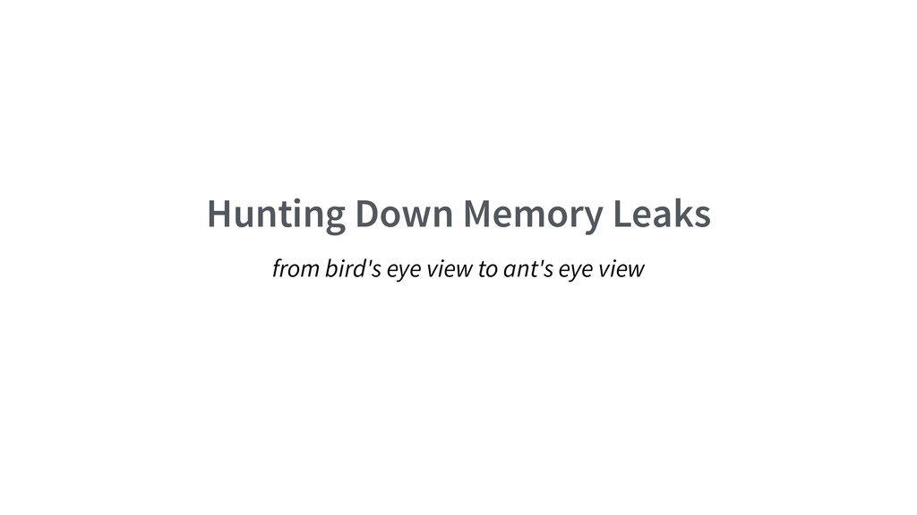 Hunting Down Memory Leaks from bird's eye view ...