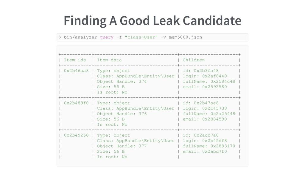 Finding A Good Leak Candidate $ bin/analyzer qu...