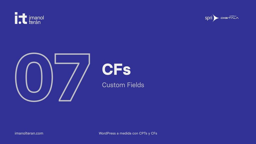 imanolteran.com 07 CFs Custom Fields WordPress ...