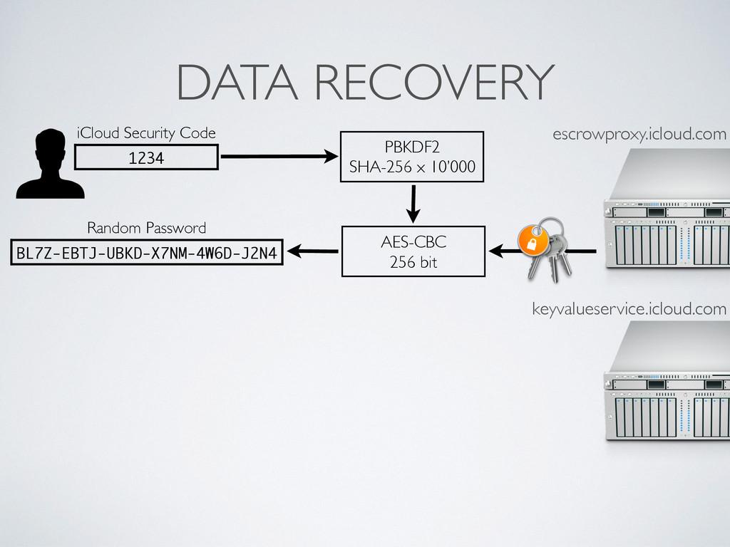 DATA RECOVERY Random Password BL7Z-EBTJ-UBKD-X7...