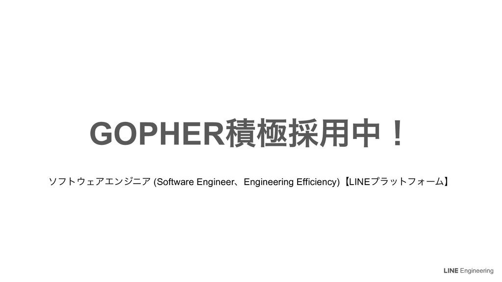 Engineering GOPHERੵۃ࠾༻தʂ ιϑτΣΞΤϯδχΞ (Software ...