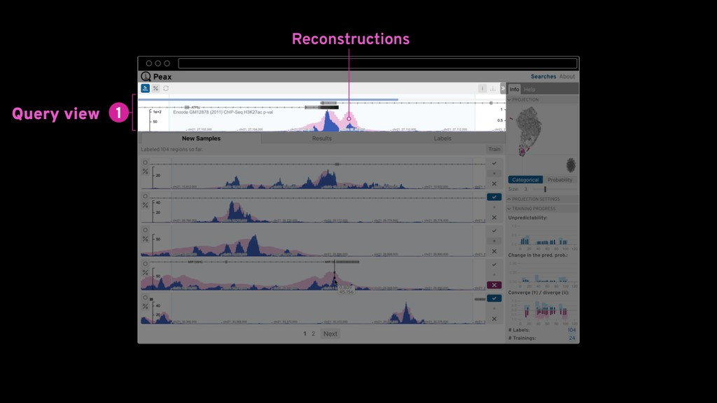 Query view Reconstructions
