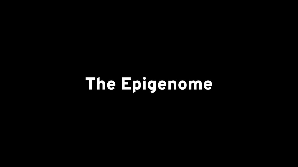 The Epigenome
