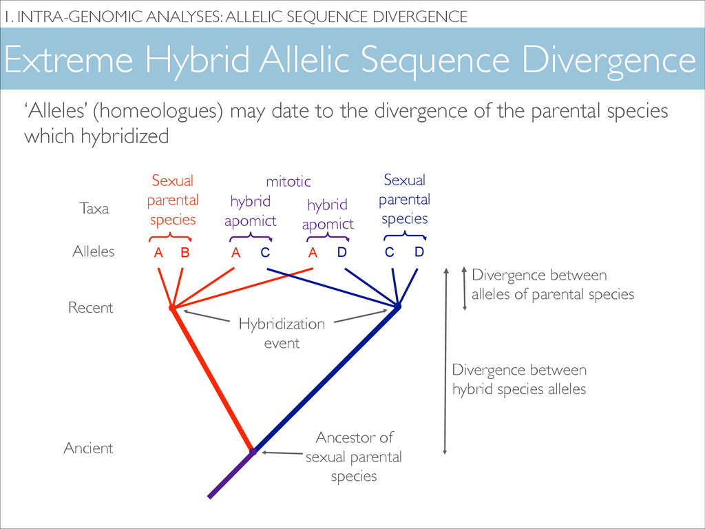 Extreme Hybrid Allelic Sequence Divergence 1. I...