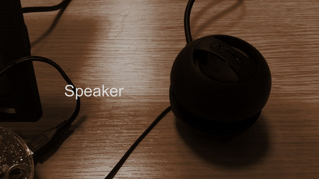 2. Speaker Speaker