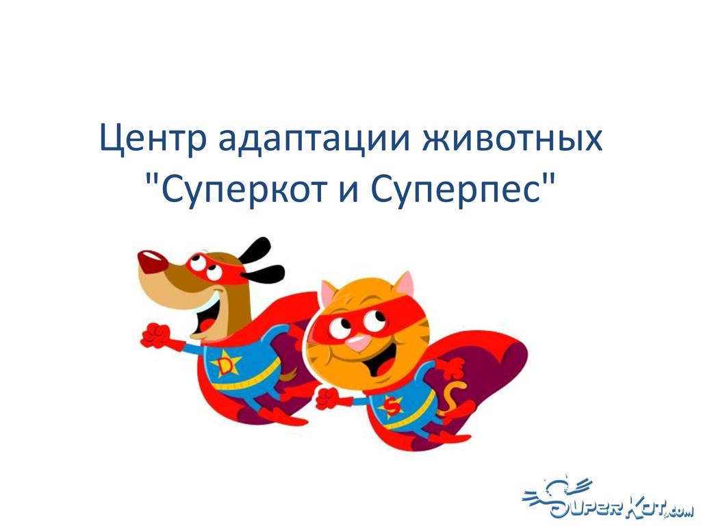 "Центр адаптации животных ""Суперкот и Суперпес"""