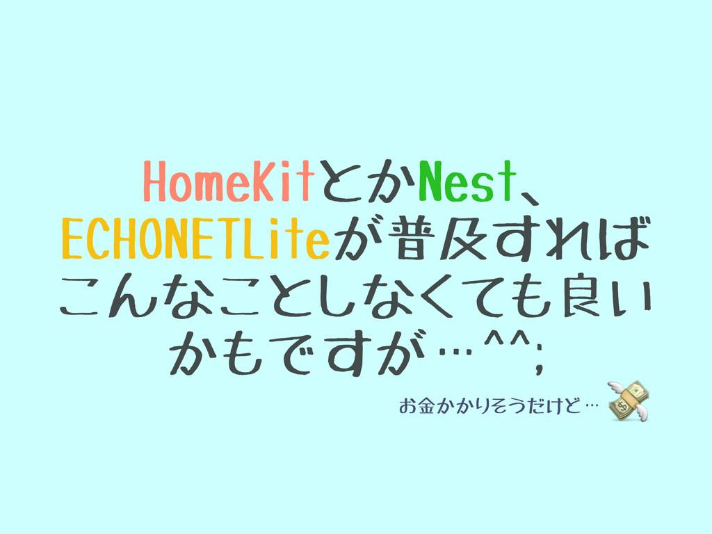 HomeKitとかNest、 ECHONETLiteが普及すれば こんなことしなくても良い ...