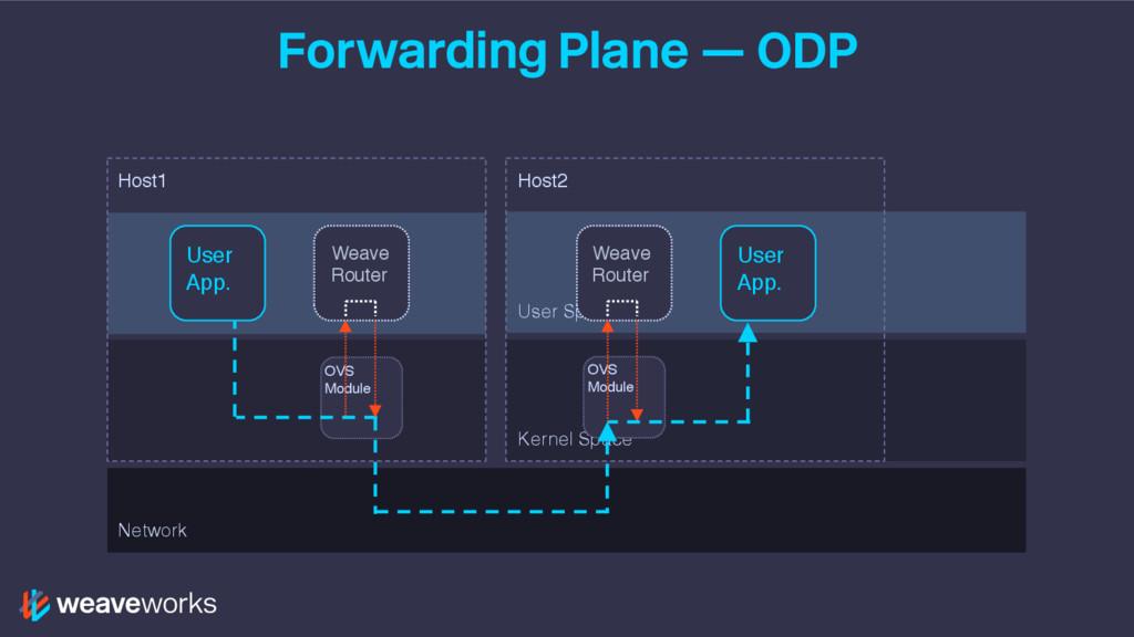 Forwarding Plane — ODP User Space Kernel Space ...