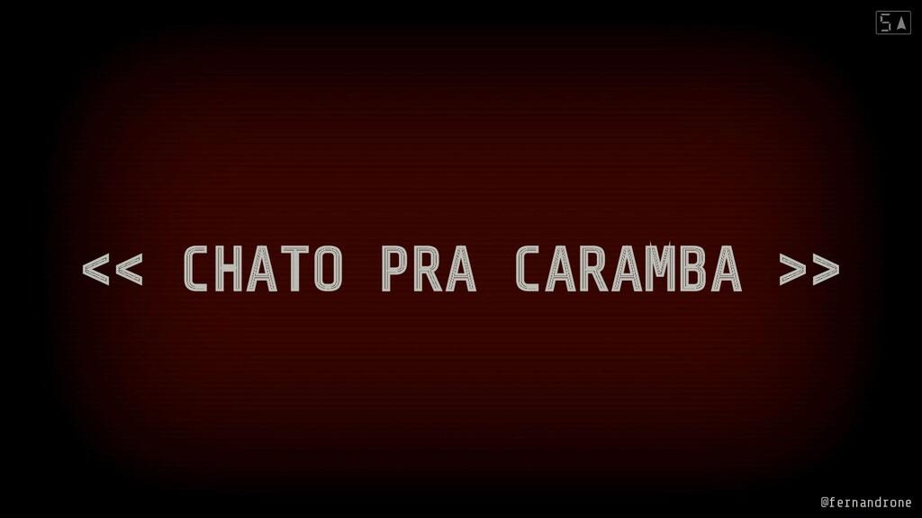 << CHATO PRA CARAMBA >> @fernandrone