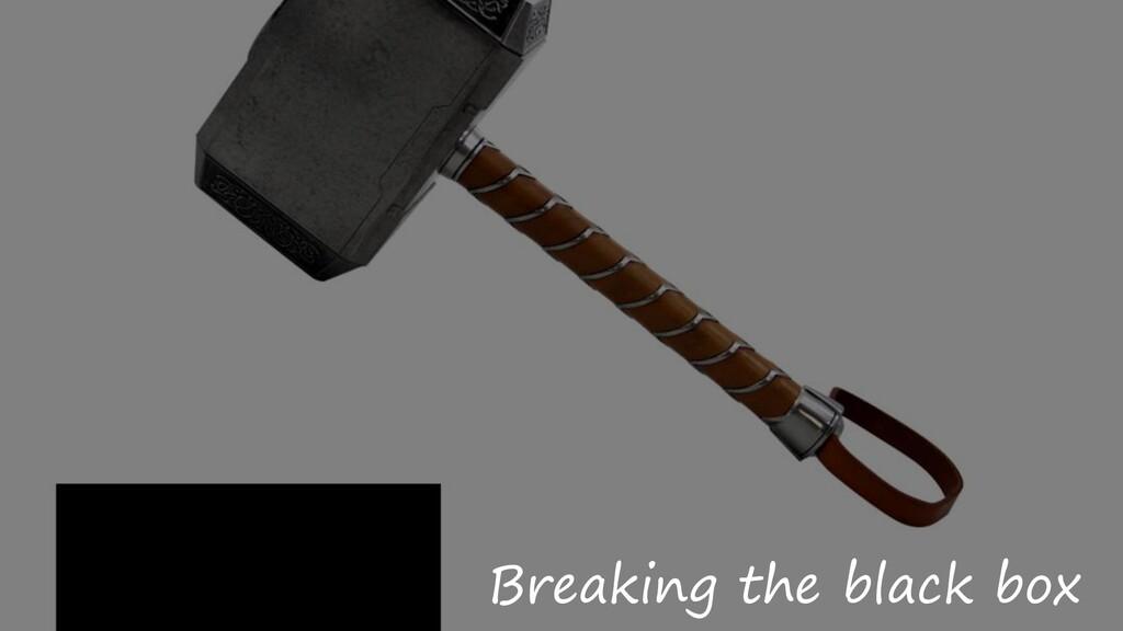 Breaking the black box