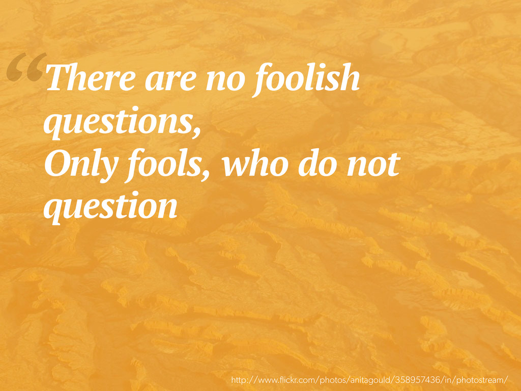 """There are no foolish questions, Only fools, wh..."