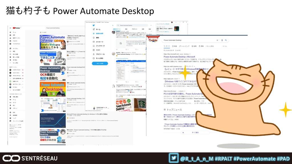 猫も杓子も Power Automate Desktop