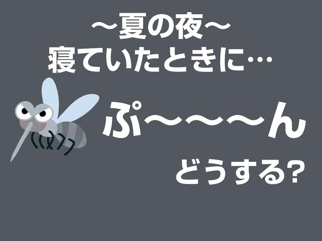 〜夏の夜〜 寝ていたときに… ぷ〜〜〜ん どうする?
