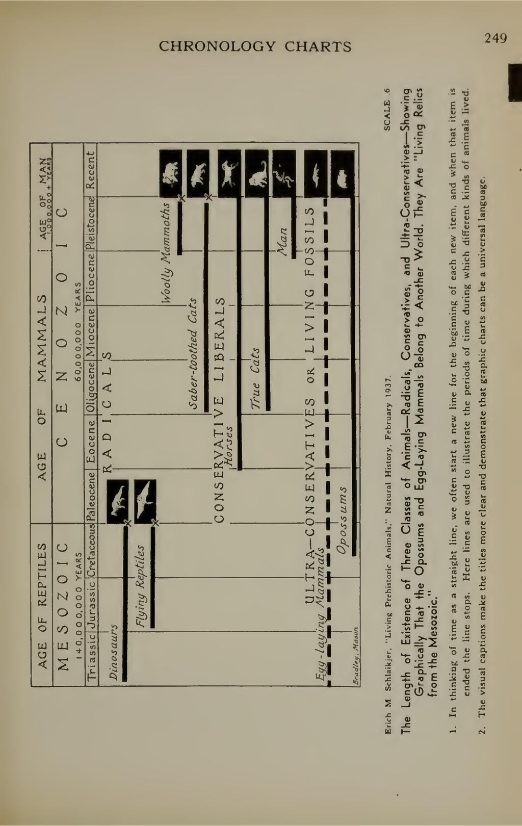 CHRONOLOGY CHARTS 249