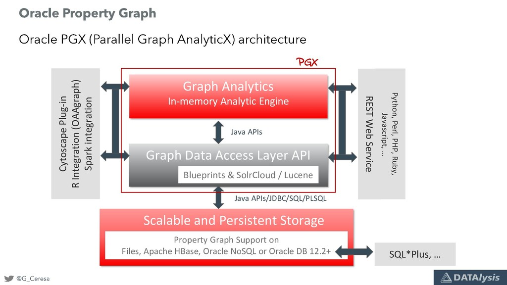 Scalable and Persistent Storage Graph Data Acce...