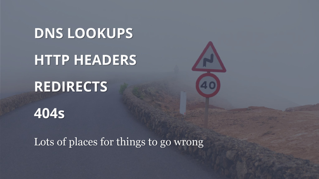 DNS LOOKUPS HTTP HEADERS REDIRECTS 404s Lots of...