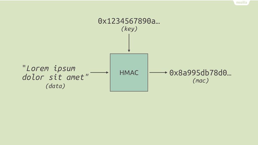 """HMAC """"Lorem ipsum dolor sit amet"""" 0x8a995db78d0..."""
