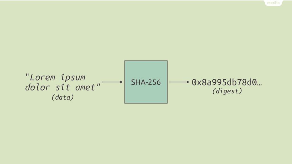 "SHA-256 ""Lorem ipsum dolor sit amet"" 0x8a995db7..."
