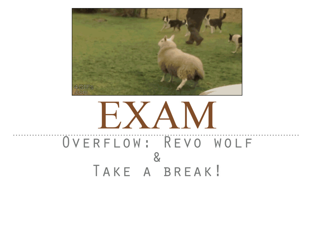 EXAM Overflow: Revo wolf & Take a break!