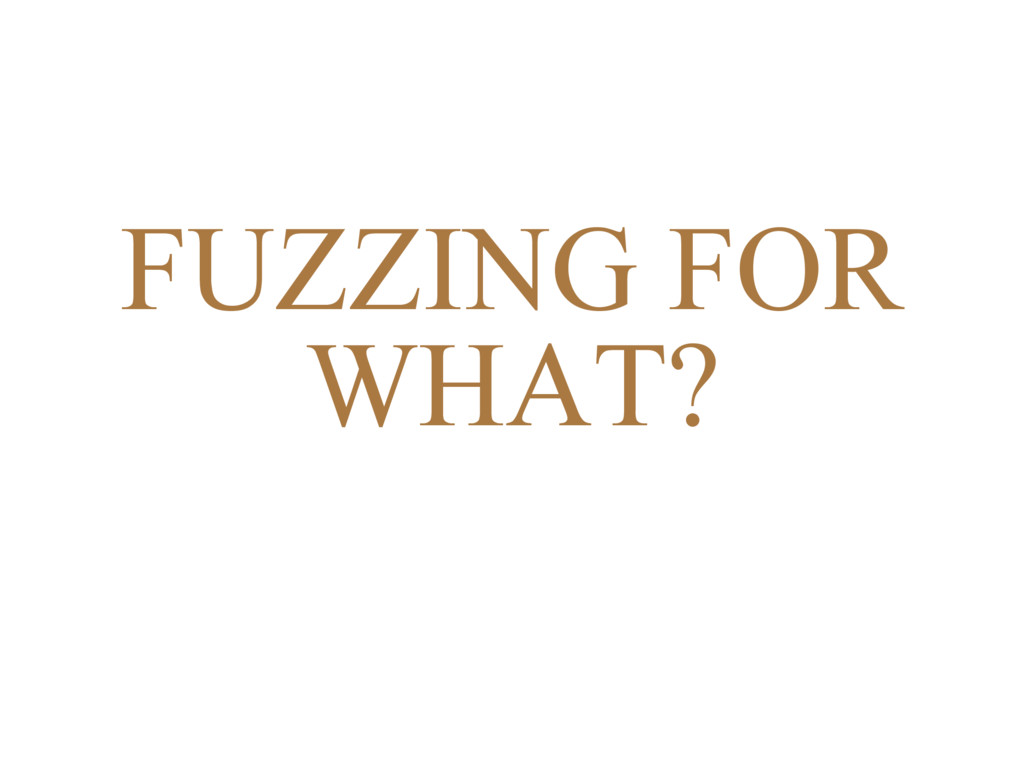FUZZING FOR WHAT?