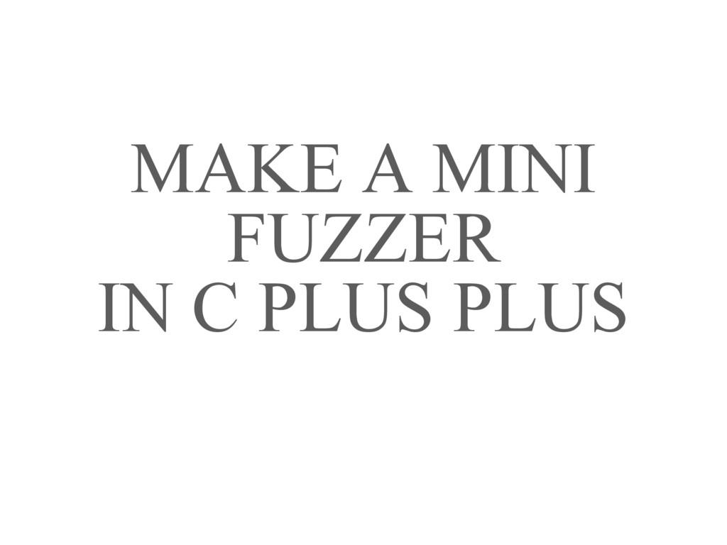 MAKE A MINI FUZZER IN C PLUS PLUS