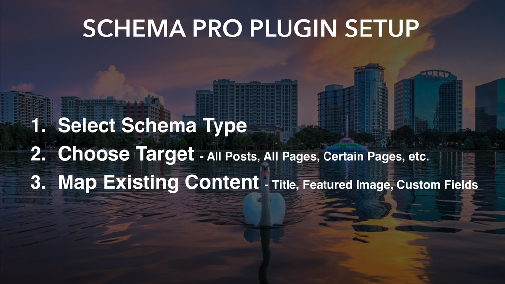SCHEMA PRO PLUGIN SETUP 1. Select Schema Type 2...