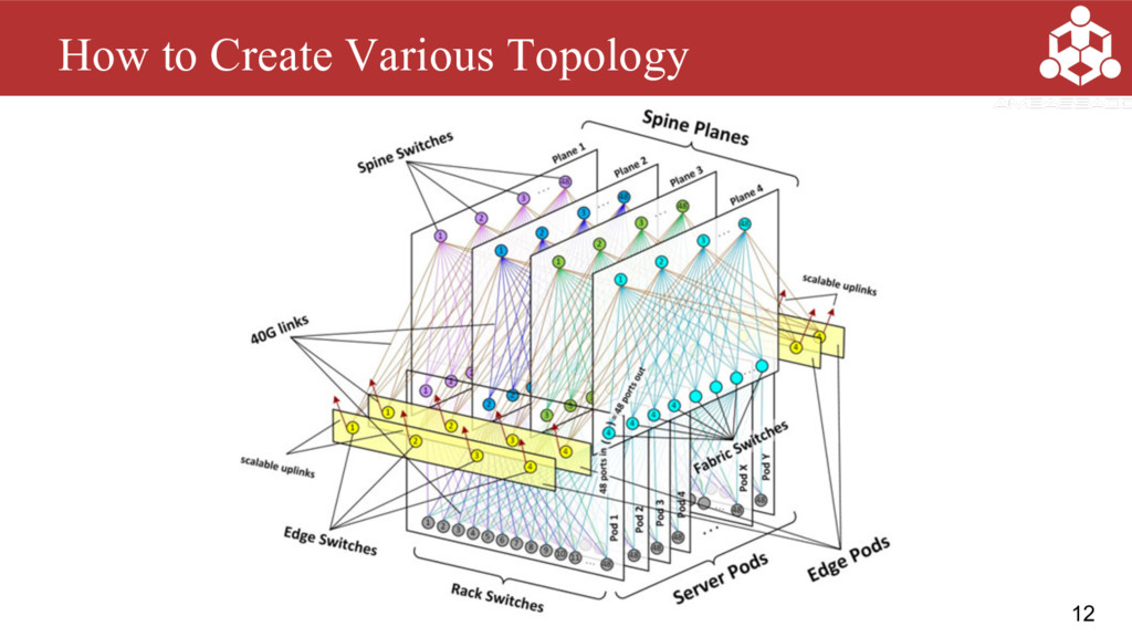12 How to Create Various Topology