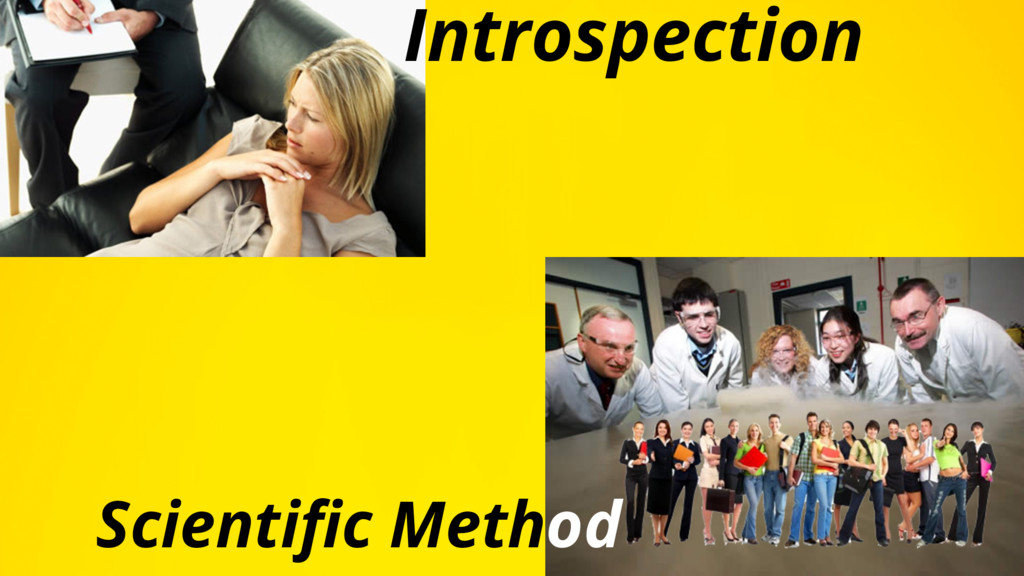 TITLE TLSKDJFLDSKF Scientific Method Introspecti...