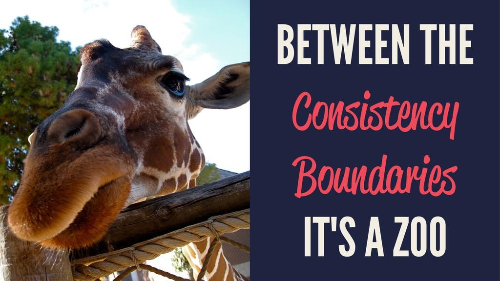BETWEEN THE Consistency Boundaries IT'S A ZOO