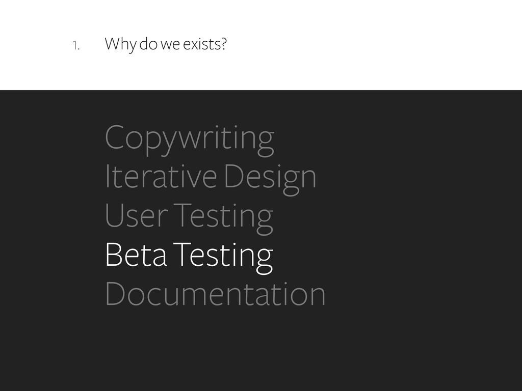 1. Why do we exists? Copywriting Iterative Desi...