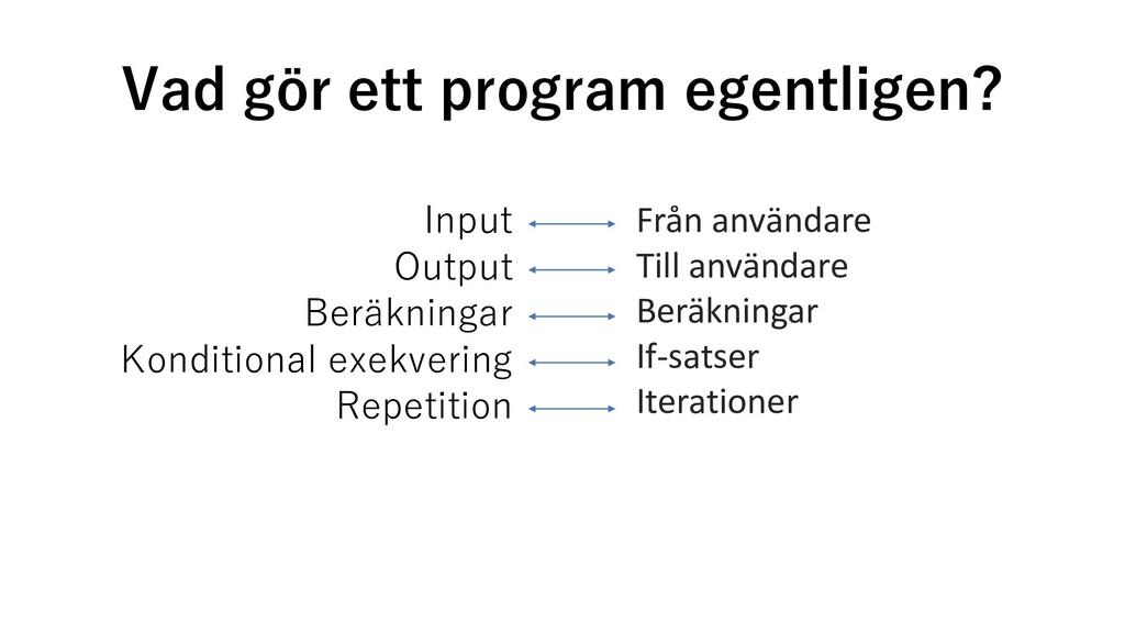Vad gör ett program egentligen? Input Output Be...