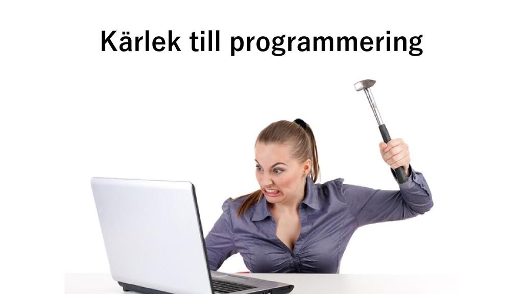 Kärlek till programmering