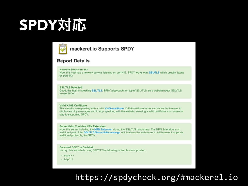 SPDYରԠ https://spdycheck.org/#mackerel.io