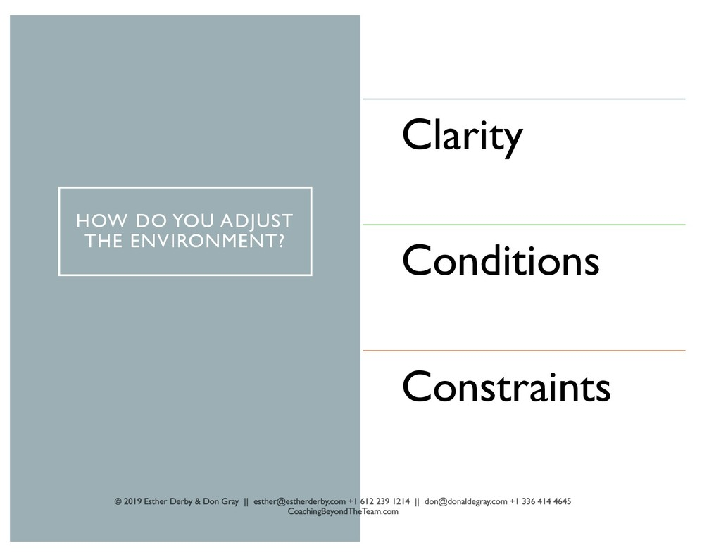 HOW DO YOU ADJUST THE ENVIRONMENT? Clarity Cond...