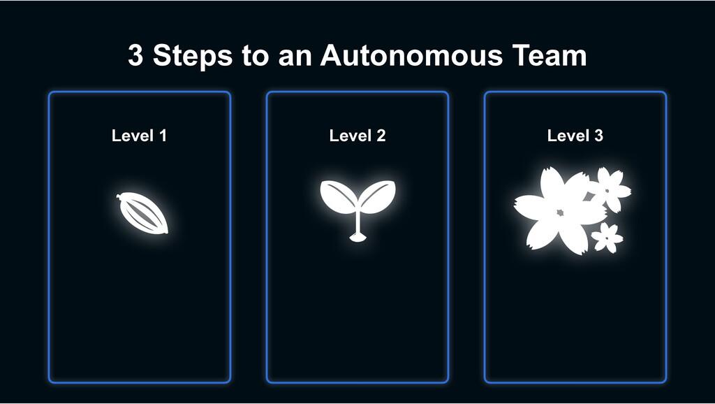 3 Steps to an Autonomous Team Level 2 Level 3 L...