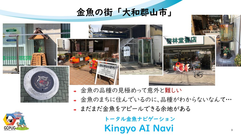 NARA 3 NARA 金魚の街「大和郡山市」 金魚の品種の見極めって意外と難しい 金魚のまち...