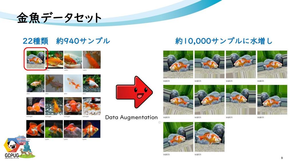 NARA 金魚データセット 9 NARA 22種類 約940サンプル Data Augment...