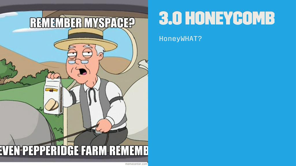 3.0 Honeycomb HoneyWHAT?