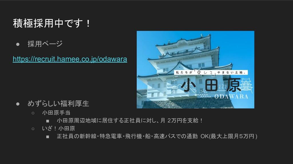 積極採用中です! ● 採用ページ https://recruit.hamee.co.jp/od...