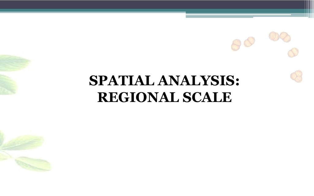SPATIAL ANALYSIS: REGIONAL SCALE