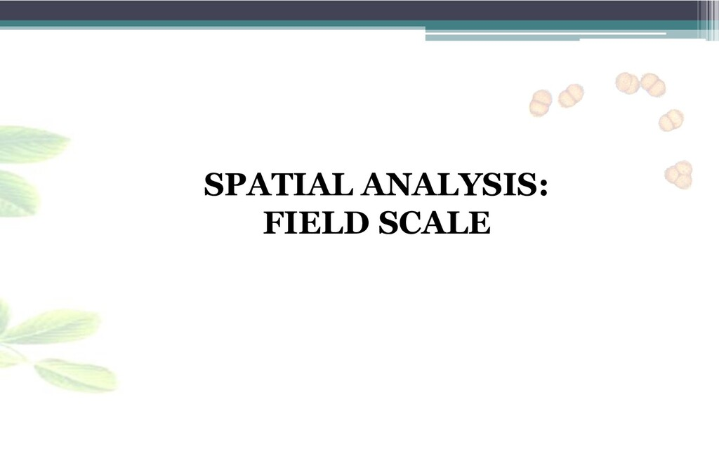 SPATIAL ANALYSIS: FIELD SCALE