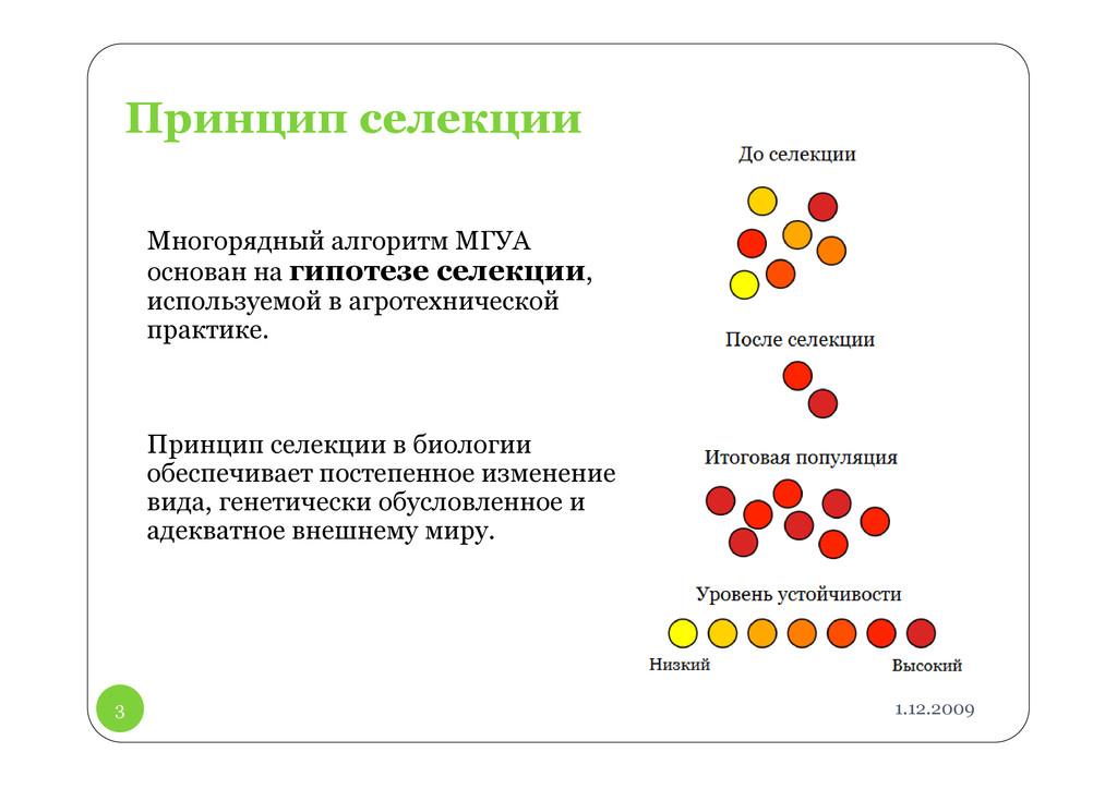 1.12.2009 3 Принцип селекции Многорядный алгори...